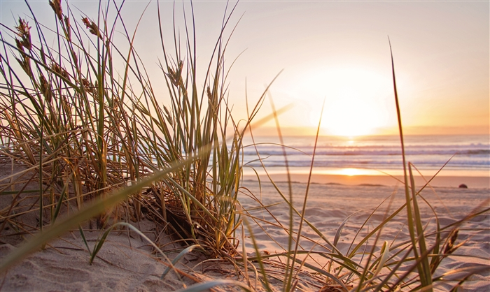 Opening hours ahead